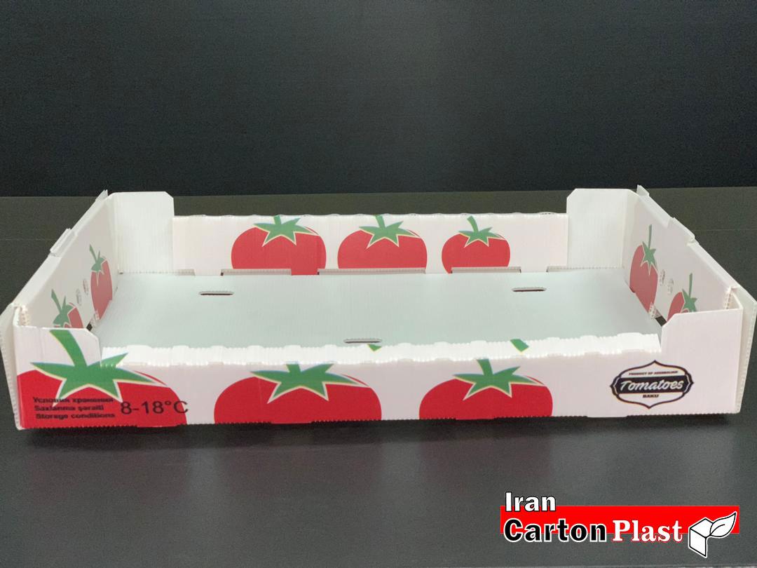 جعبه میوه کارتن پلاست