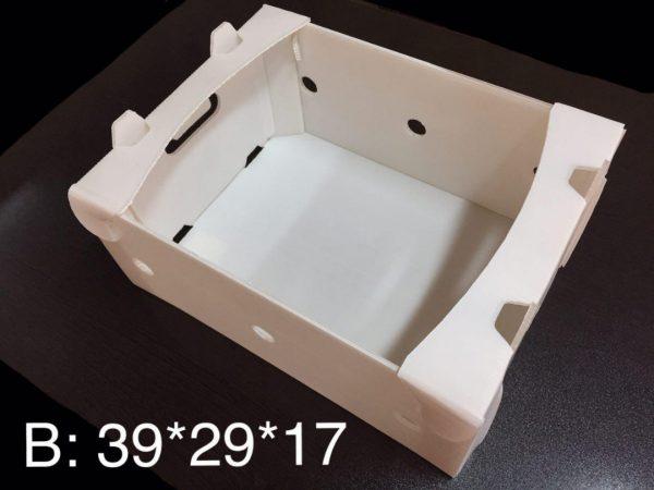 جعبه کیوی ایران کارتن پلاست