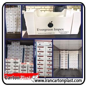 جعبه-میوه-کارتن-پلاست