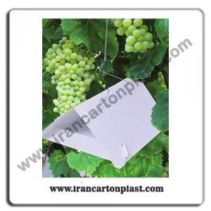 2020201 62 300x300 - صنعت کشاورزی
