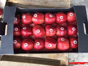AM92 300x225 - جعبه سیب کارتن پلاست کد 92