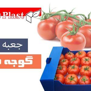 فرنگی 300x300 - جعبه گوجه فرنگی کارتن پلاست