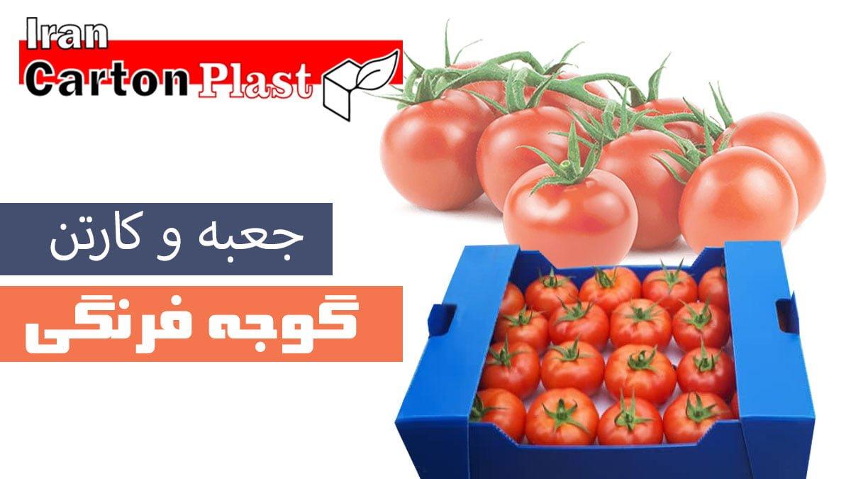 فرنگی - جعبه گوجه فرنگی کارتن پلاست