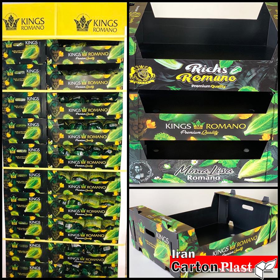 IMG 570211 - اصول بسته بندی مناسب میوه و سبزیجات
