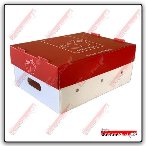 جعبه فلفل دلمه 5 کیلویی