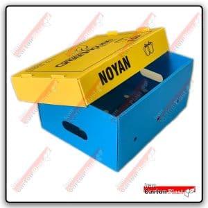جعبه فلفل دلمه ای رنگی