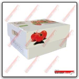جعبه فلفل دلمه 3 کیلو