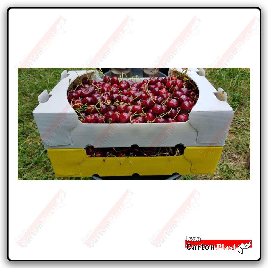 Cherry packaging504 - چاپ حرفه ای طرح دلخواه روی ورق کارتن پلاست