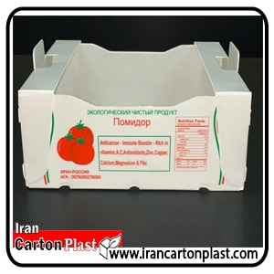 جعبه گوجه فرنگی کارتن پلاست 8 کیلویی