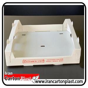 جعبه گوجه فرنگی کد 405