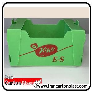 جعبه کیوی کارتن پلاست