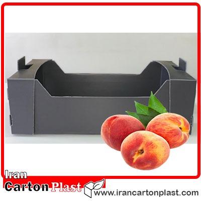Peach box - جعبه میوه کارتن پلاست به همراه لیست قیمت
