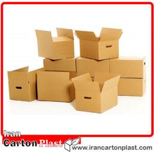 carton 300x300 - مقایسه جامع کارتن پلاست و کارتن سلولوزی