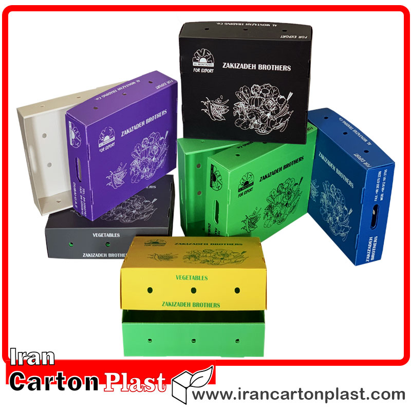 جعبه کلم و جعبه لوبیا سبز